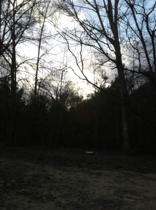 Shadowed sunset